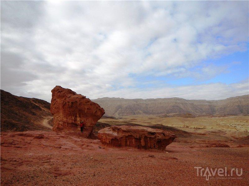 Тимна - между Землей и Марсом / Фото из Израиля
