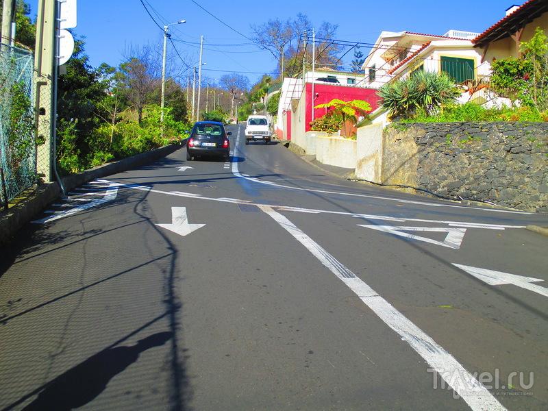 Мадейра. Прогулка в деревню Монте / Португалия