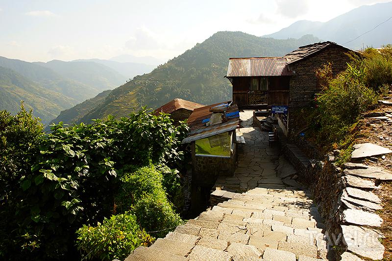 Дорога к гостевому дому / Фото из Непала