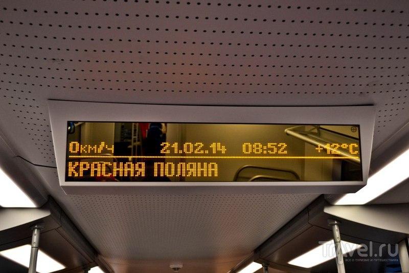 Сочи. Жаркие, зимние, мои / Фото из России