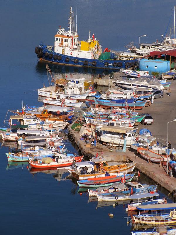 Турция. Январское море / Турция