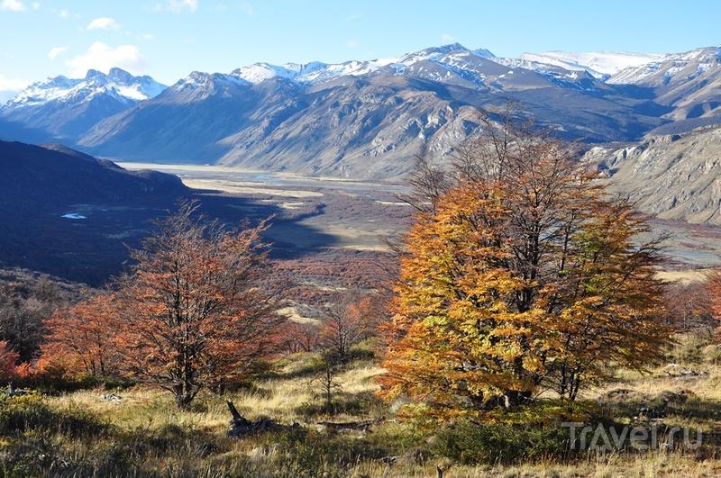 Патагония. Прогулка к горе Фицрой / Аргентина