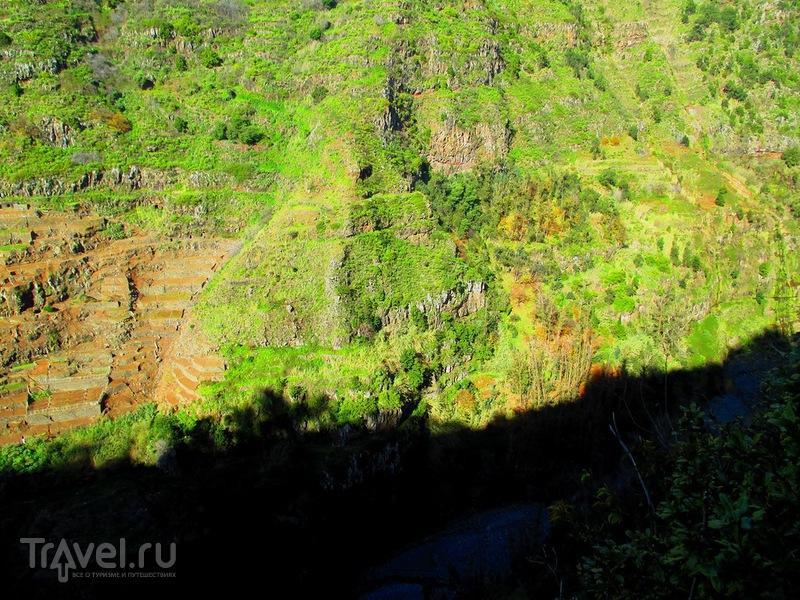 Мадейра. Прогулка по Леваде до Куррал / Португалия