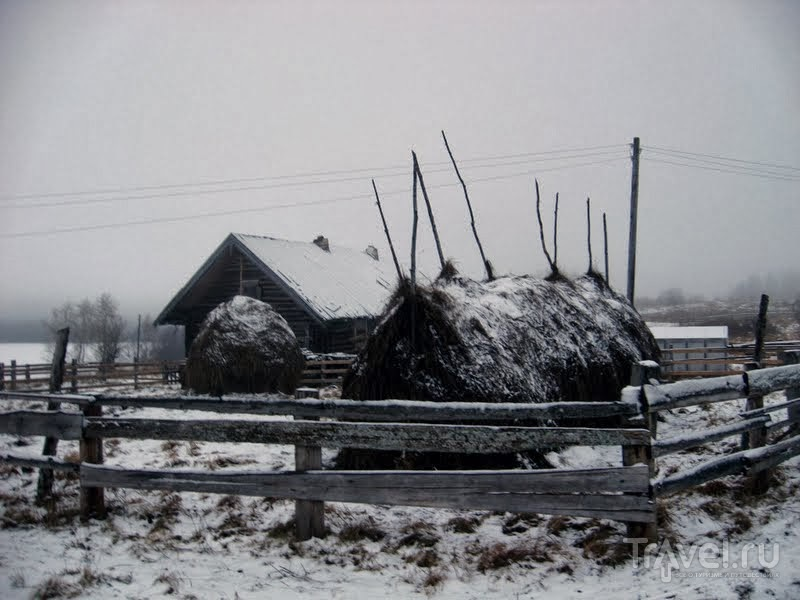 Деревня Карпова. Летом она жилая, а зимовать там остается только одна семья / Россия