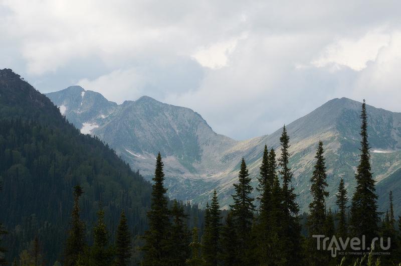 Кузнецкий Алатау, Киргизия / Фото из Киргизии
