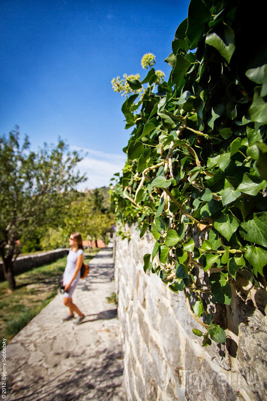 Побережье осенью: Бар / Фото из Черногории