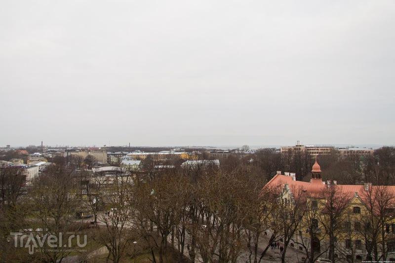 Дневная прогулка по Таллину / Эстония