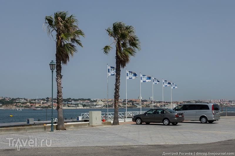 Лиссабон. Рыбный берег Кашкайша / Фото из Португалии