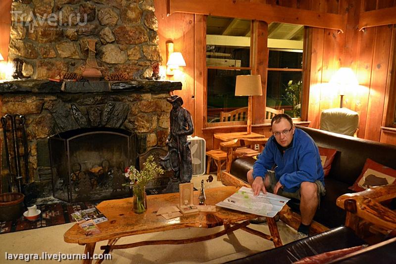 """Коты, медведи и привидения отеля """"Sierra Sky Ranch"""" в Калифорнии / США"""