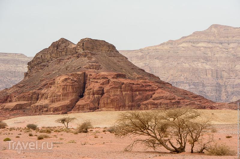 """Национальный парк """"Тимна"""" / Фото из Израиля"""