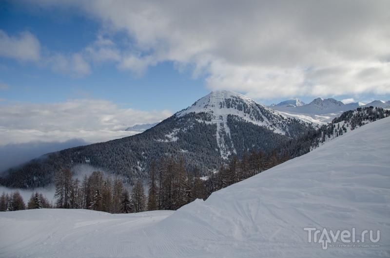 Лес и горы / Фото из Франции
