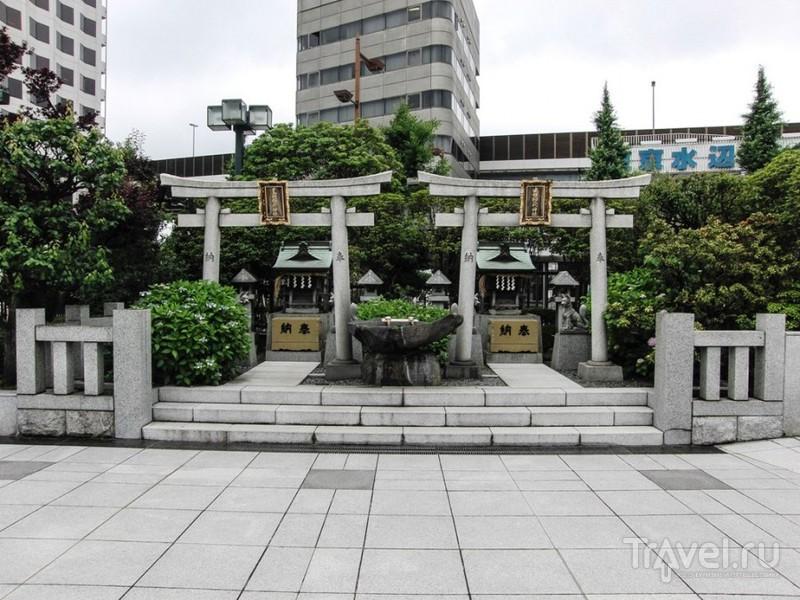 Токийский район Рёгоку или в гостях у сумоистов / Япония