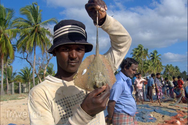 Uppaveli (Уппавели), Шри-Ланка / Фото со Шри-Ланки