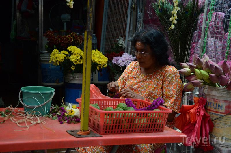 Малайзия: небоскребы, джунгли, птицы и культ еды / Фото из Малайзии