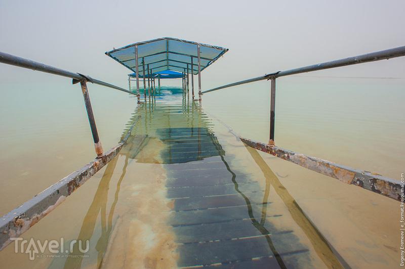 На берегу Мертвого моря / Израиль