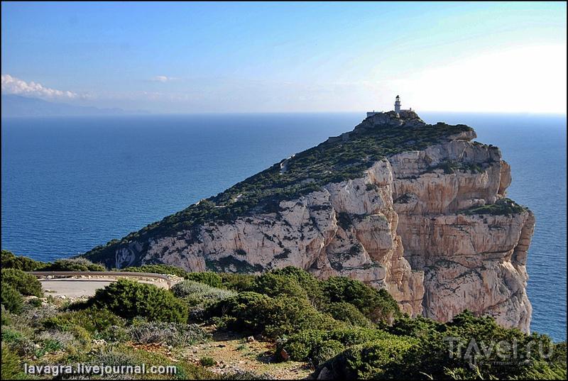 Мыс Капо-Качча. Сардиния. Италия / Фото из Италии