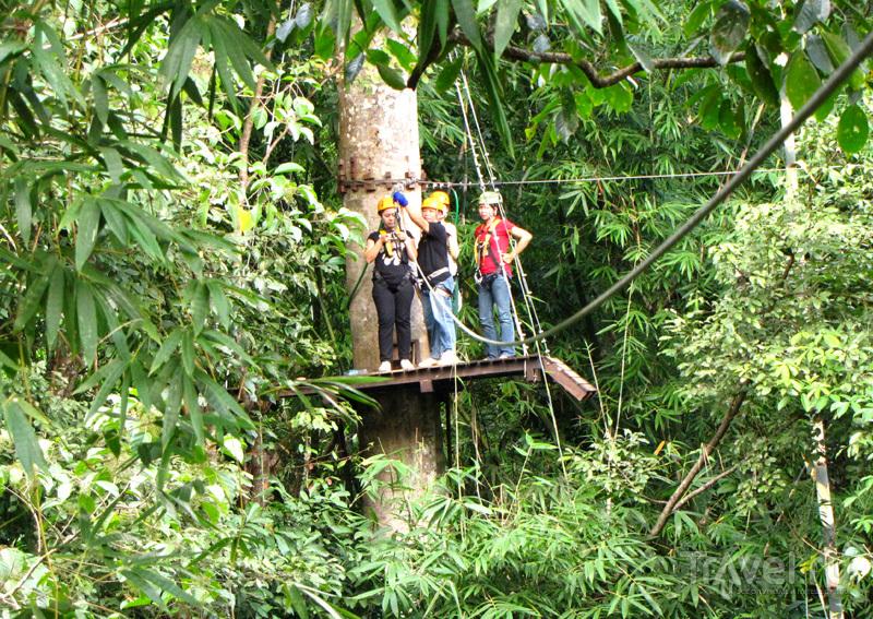 """Приключения на """"кокосовом"""" острове Самуй / Фото из Таиланда"""