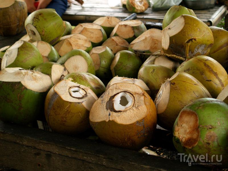 Королевские кокосы на острове Самуй в Таиланде / Фото из Таиланда