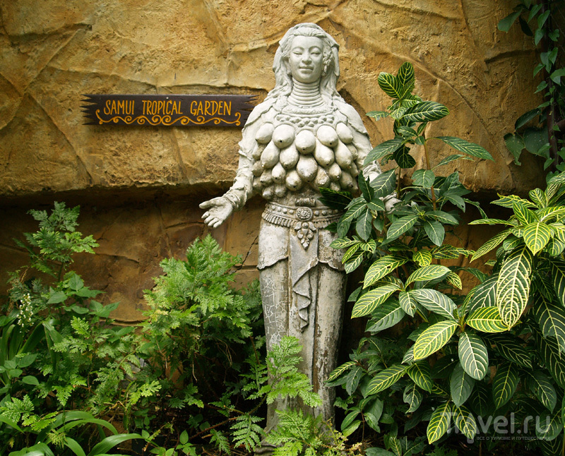 Статуя на острове Самуй в Таиланде / Фото из Таиланда