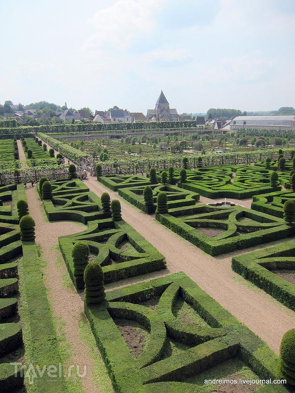 Самшитовый сад / Фото из Франции