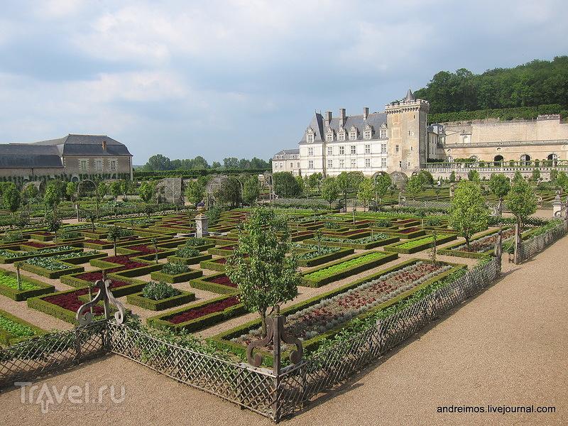 Сады Вилландри (Jardins du château de Villandry) / Фото из Франции