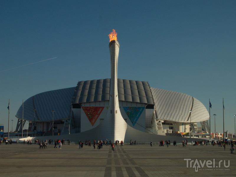 Экскурсия по Олимпийскому парку / Фото из России