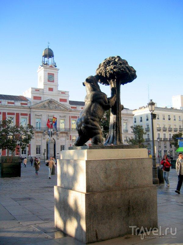 Медведь и земляничное дерево - символ Мадрида. На заднем плане - здание почтамта