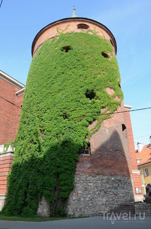 Пороховая башня Риги впервые упоминается в летописях, датированных 1330 годом