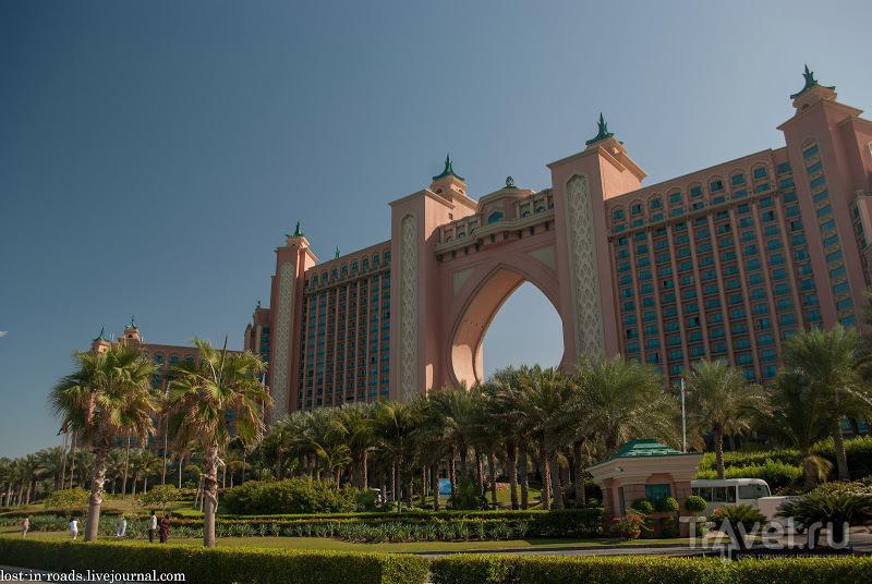 Пальма Джумейра. Дубай / Фото из ОАЭ