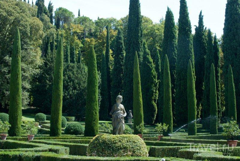Кипарисы в саду Джусти произвели в свое время большое впечатление на прогуливавшегося здесь Гете