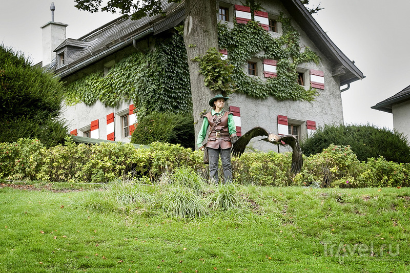 Замок Хоенверфен и Соколиная охота. Зальцбург, Австрия / Фото из Австрии