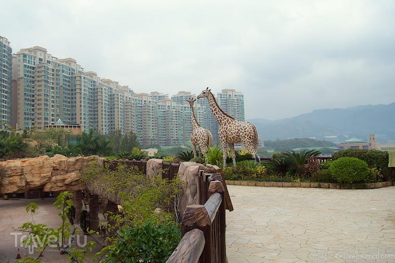 Ноев ковчег и Солнечная башня в Гонконге / Фото из Гонконга
