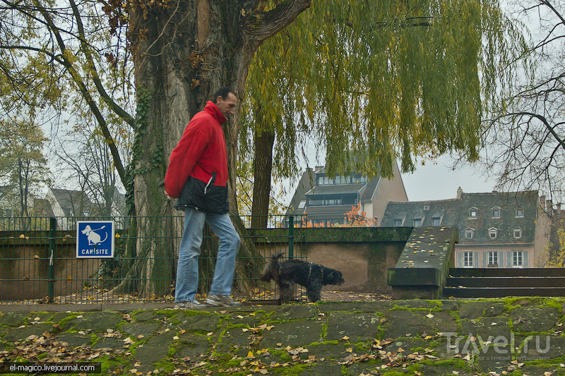Страсбург. Прогулка по реке Иль / Фото из Франции
