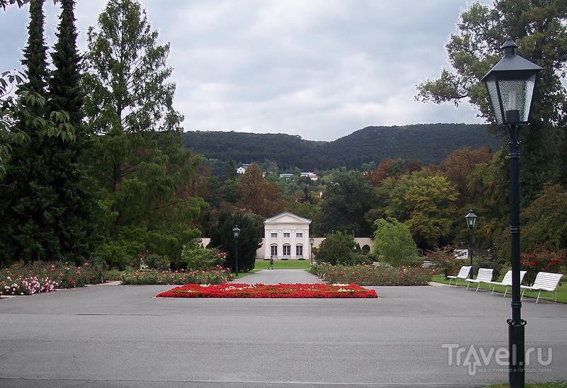 Розарий Бадена под Веной. Австрия / Австрия