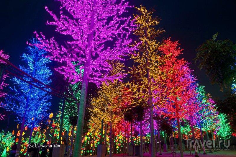 I-City, светящийся сад  в Малайзии / Малайзия