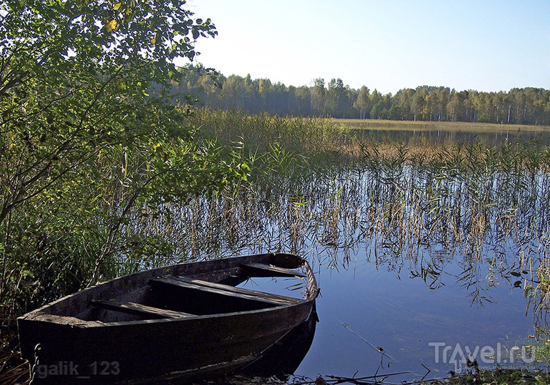 Смоленское Поозерье. Россия / Фото из России