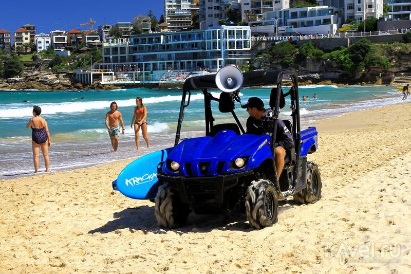 Австралия, Bondi Beach / Австралия