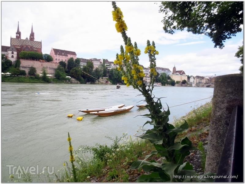 Вид с набережной Рейна на Большой Базель / Фото из Швейцарии