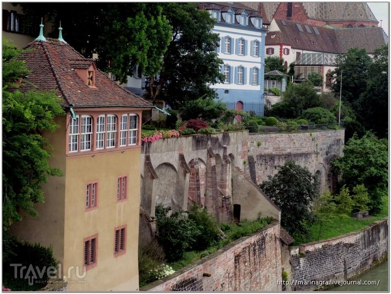 Старинные дома и сады на крутом берегу Рейна / Фото из Швейцарии
