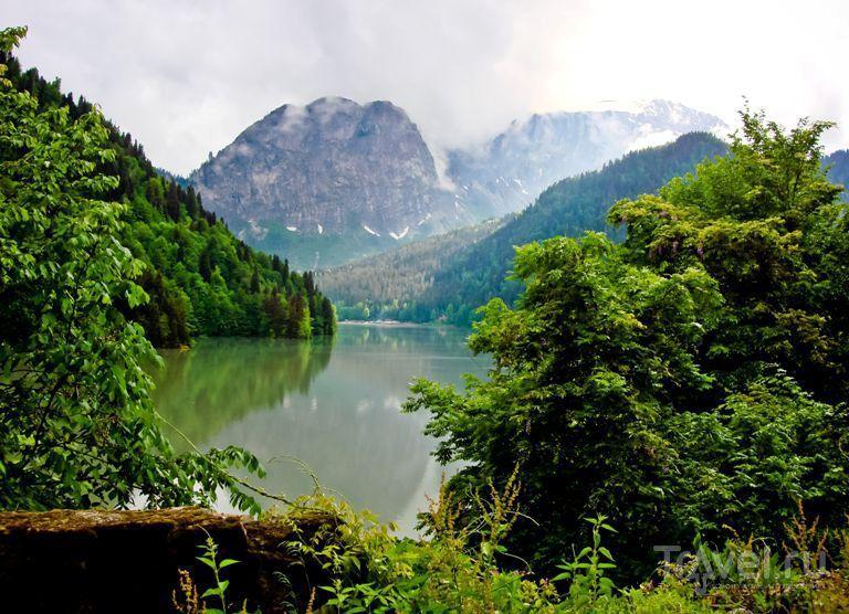 Озеро Рица. Абхазия / Абхазия