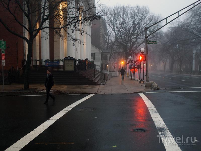 Yale University, New Haven / Фото из США