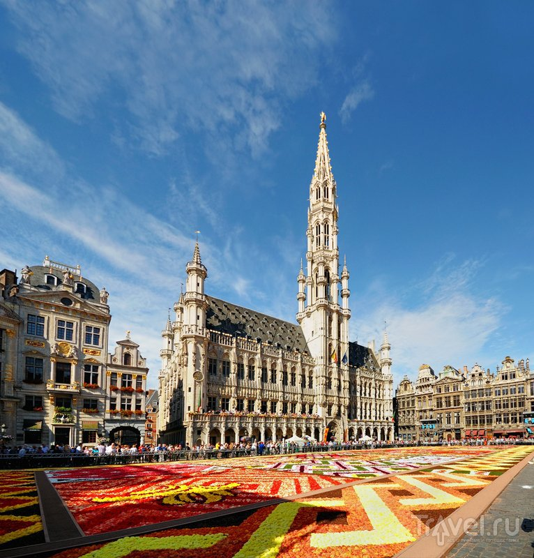 Цветочный ковер перед ратушей