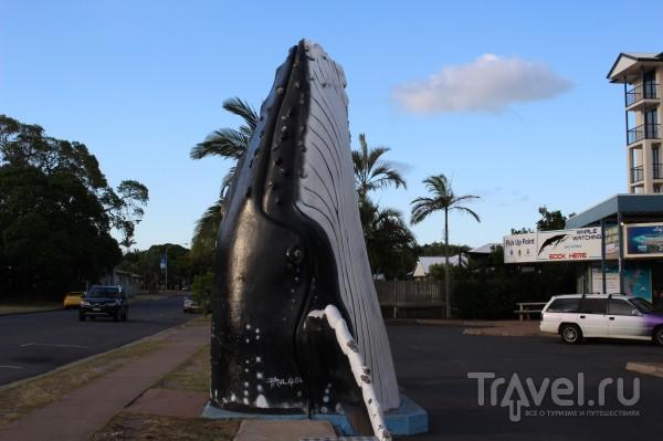 Hervey Bay. Австралия / Австралия