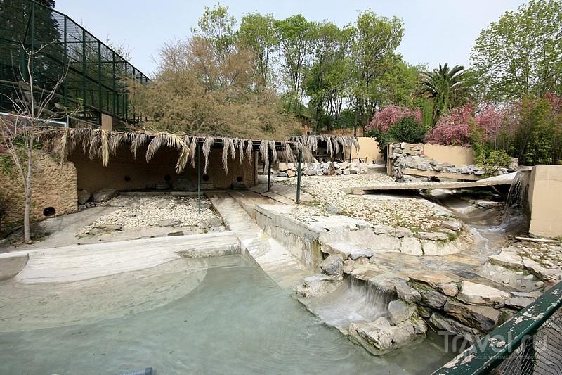 Стамбульский зоопарк / Турция