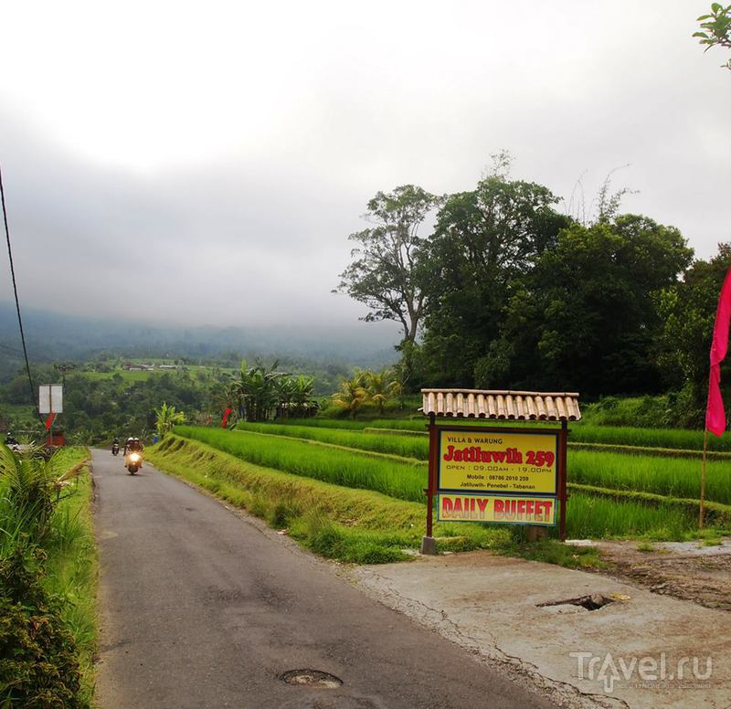 Джатилувих: рисовые террасы под охраной ЮНЕСКО / Индонезия