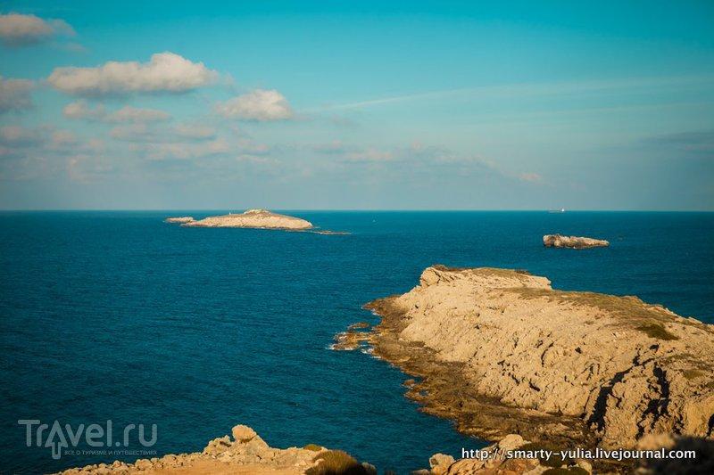 Кипр: ослики / Кипр