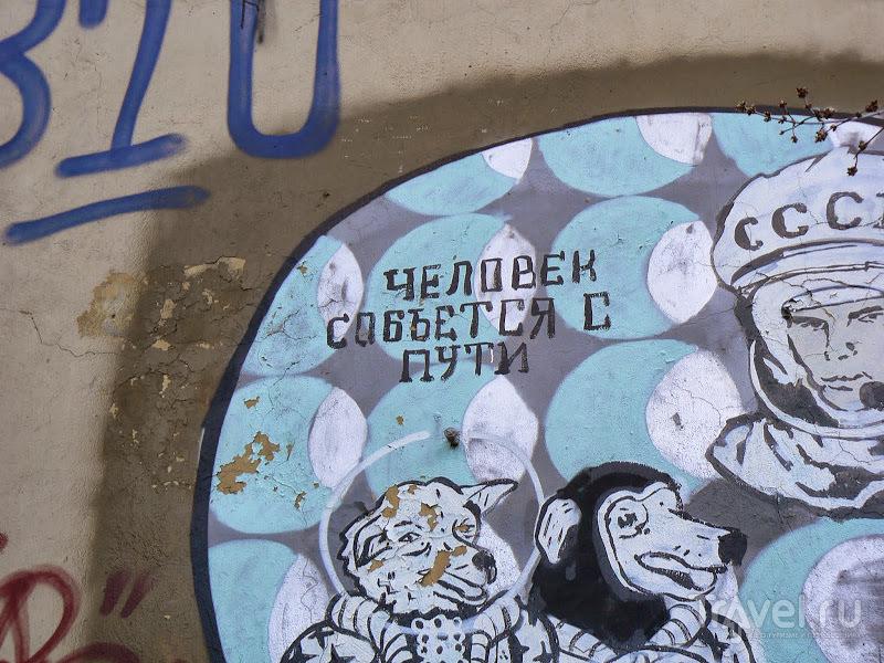 Москва. Дворовый арт Хохловского переулка. Алиса в Зазеркалье / Россия