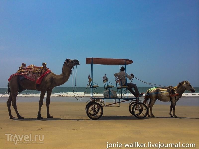 Хроники GOA. История одного путешествия / Индия