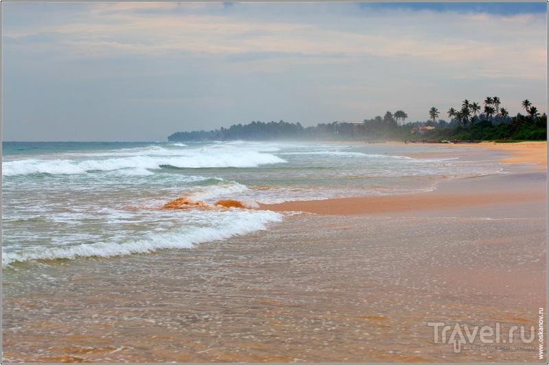 Поначалу мы боялись, что не сможем купаться из-за волн / Шри-Ланка