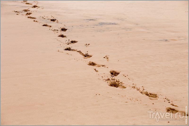 Мы  оставили острову свои следы на песке, а он в ответ оставил свой - в самом сердце каждого... / Шри-Ланка